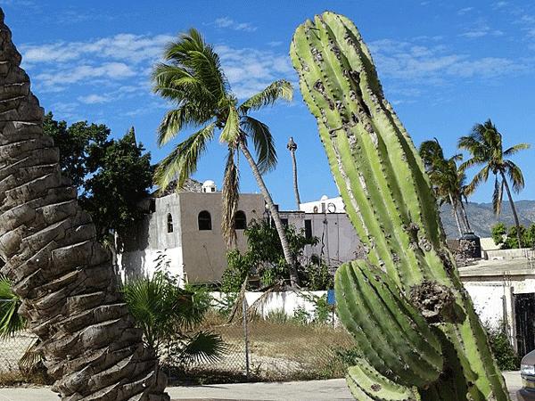 Découverte de San José del Cabo